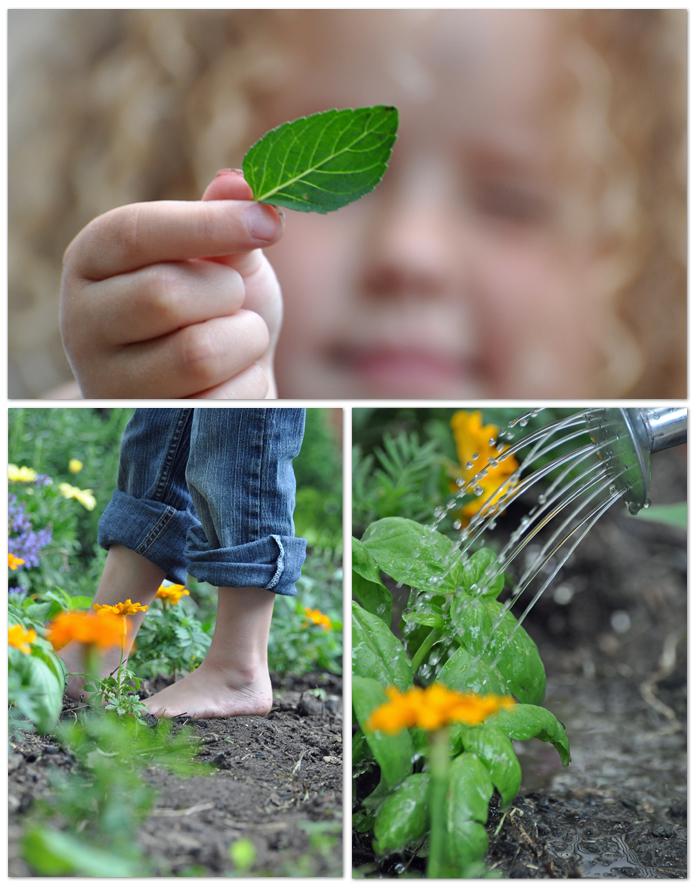 Picking Garden_edited-1