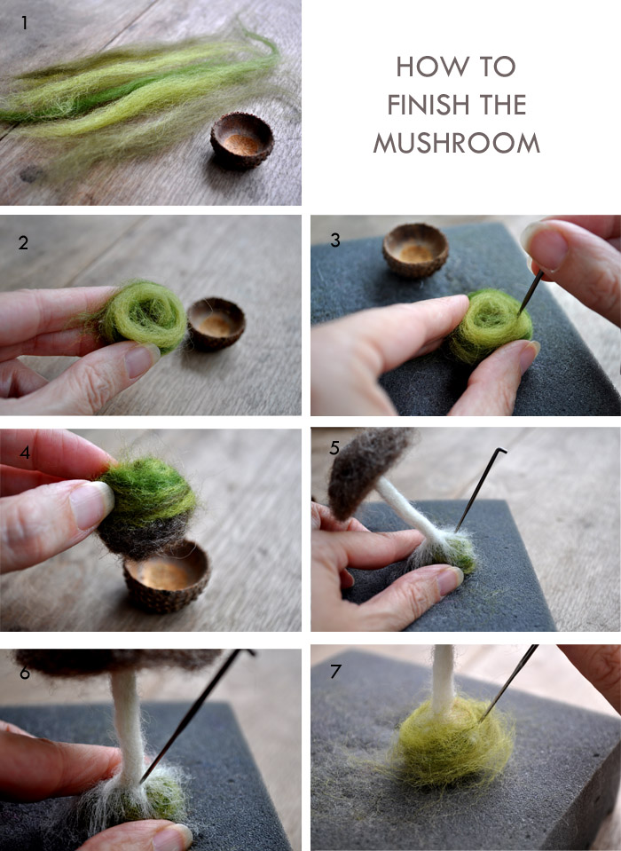 Mushroom Botom
